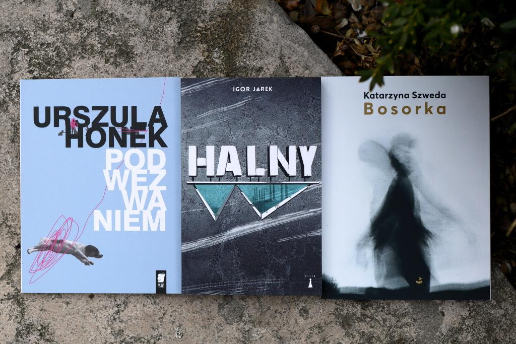 Nagroda-Stypendium im. Stanisława Barańczaka nominacje: Urszula Honek, Igor Jarek, Katarzyna Szweda.